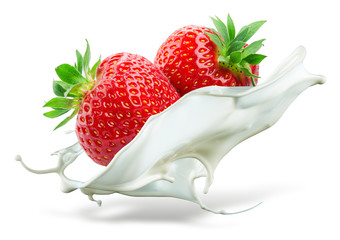 Two strawberries falling into milk. Splash isolated on white bac