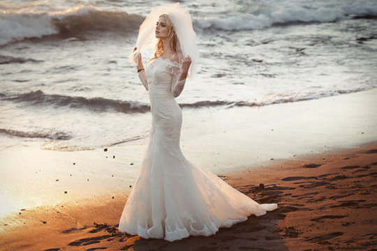 Lonely bride looking for her husband