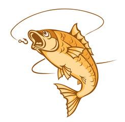 Catch a fish
