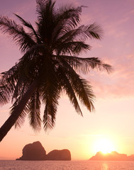 Idyllic Wallpaper Sunset Divine