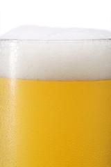 ビールと泡 白バック