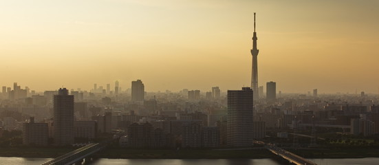 Tokyo sky tree and Tokyo city view