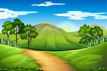 A green landscape