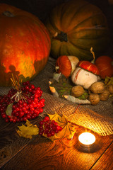 Halloween pumpkin still life3