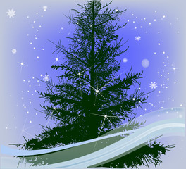 composition with green fir and snowflakes