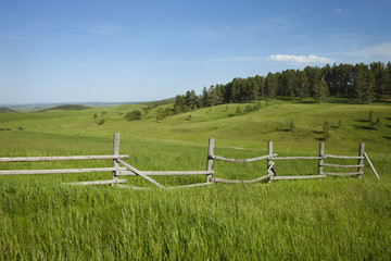Poster Heuvel Rail fence and hills with pines in Montana