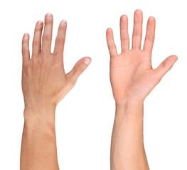 Men hand isolated on white