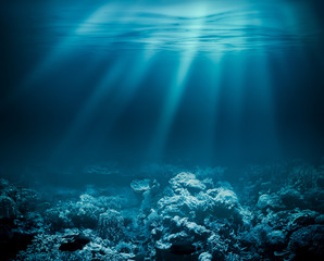 Fototapeten Riff Sea deep or ocean underwater with coral reef as a background for