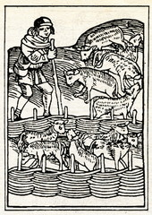 "Medieval draving ""Shepherd with sheep"""