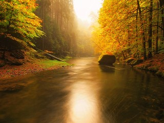 Colorful banks of autumn mountain river covered