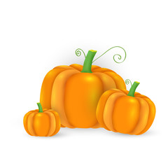 Vector cute pumpkin background