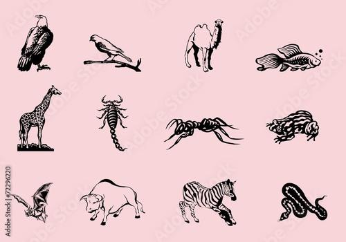 Planche animaux noir et blanc Stickers tatouages1 Stock
