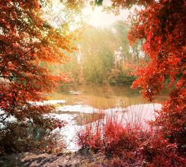 Sunbeams over river