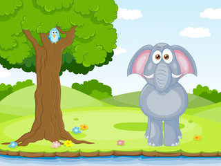 Wall Mural - funny elephant and bird