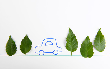 Leaves with painted car isolated on white