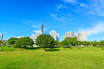 Landscape grass and trees prospects the condominiums of landmark
