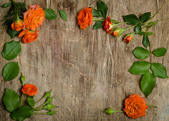 Roses with leaves frame  on wooden background