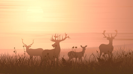 Horizontal illustration of wild animals on meadow. Wall mural
