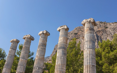 temple of Athena (columns)