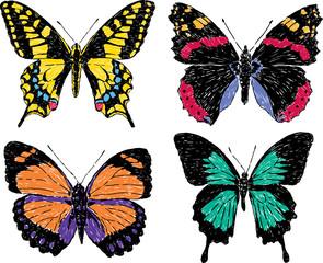 butterflies sketches