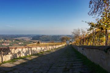 Burgweg mit Wein