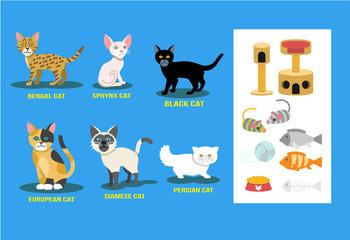 Vector flat cat set