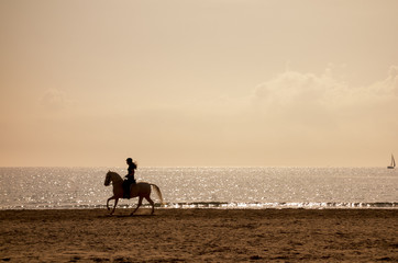 Horse riding silhouette at the beach