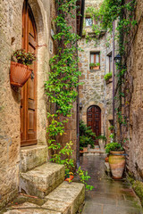 Wall Mural - Alley in old town Pitigliano Tuscany Italy