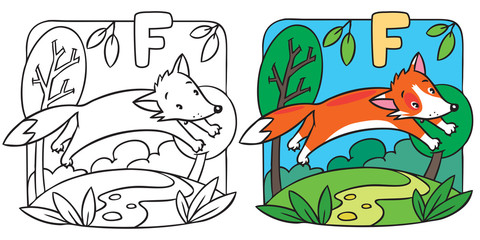 Little red fox coloring book. Alphabet F