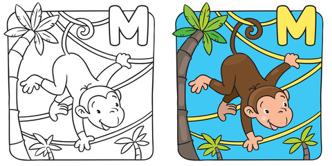 Coloring book of funny monkey on lians. Alphabet M