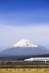 Wall Mural - Mt. Fuji in Japan