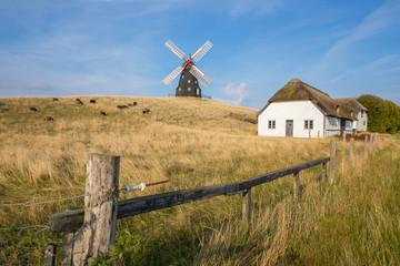 Windmühle auf der Weide