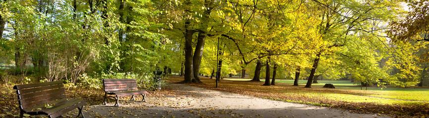 Fototapeta Fall in public park obraz