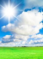 Sunlit Landscape Summer Days