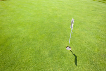 Golf Practice Putting Green Flagstick Hole