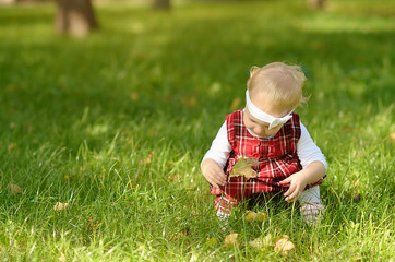Toddler girl play with leaf on the field