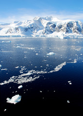 Fototapete - ice floe in antarctica