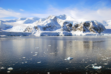 Wall Mural - ice floes in antarctic ocean