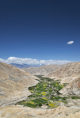 Green village in Himalayas view