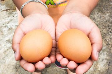 children hand hold eggs chicken farm