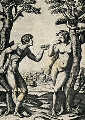 Adam and Eve,  Marcantonio Raimondi after a Raphael.