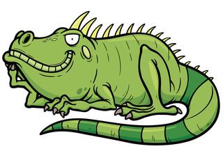 Vector illustrations of Cartoon green iguana