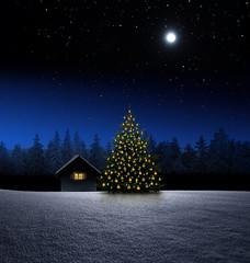 Wall Mural - Hütte mit Christbaum bei Nacht