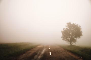 Foggy road Fototapete
