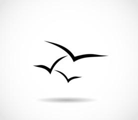 Seagull, sea mew icon vector
