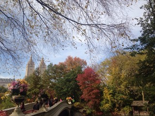 Autumn in the Central Park, NYC