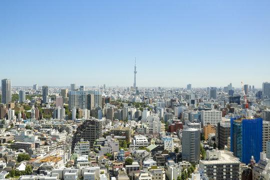 快晴青空 東京スカイツリーと都心の街並