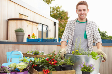 Man Planting Container On Rooftop Garden