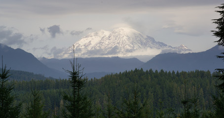 Wall Mural - Hazy Atmospheric Conditions National Forest Mt Rainier