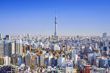 Tokyo, Japan Cityscape View
